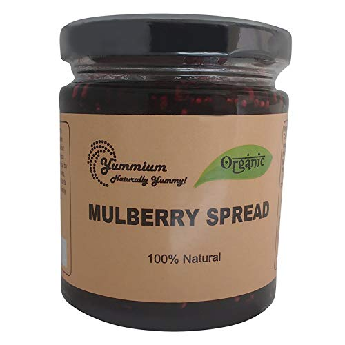 Yummium Mulberry Flavor Spreads 225Gms,Pack Of1