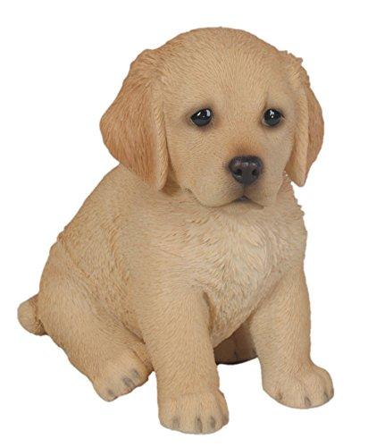 Vivid Arts Pet Pals – Chiot Golden Retriever