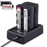 Best Sony Usb Batteries rechargeables - NP-F550/NP-F570 2900mAh Batterie de Rechange (2-Pack) Chargeur Double Review