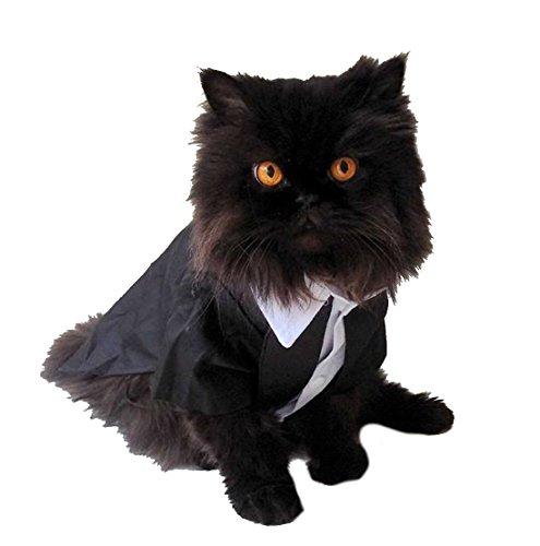 Super Niedlicher Schwarz & Weiß Klein Hund und Katze Tuxedo Kostüm - Super Katze Kostüm