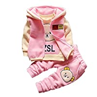 Gyratedream Baby Clothes Set Tracksuits for Girls Boys Thick T-Shirt Sweatshirt + Hoodie Zip Up Vest Tops + Trousers Pants 3Pcs Outfits for 1-5 Years Kids Pink