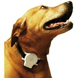 Avanzado Collar Anti-ladridos para Perros con Mando de Voz