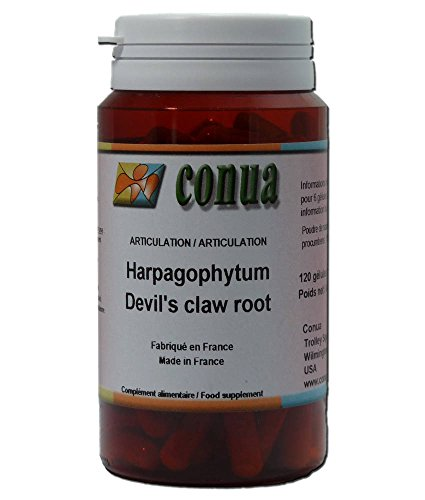 Harpagophytum griffe du diable douleurs rhumatismes articulaires musculo squelettique 120 gélules articulations douloureuses