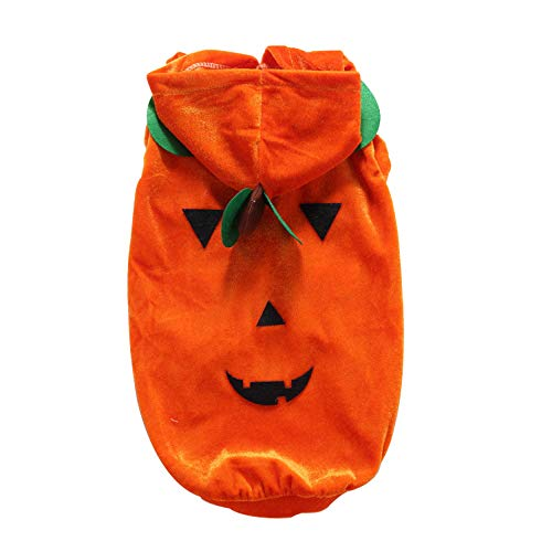 KDSANSO Kürbis Haustier Hoodie Mantel, Pet Halloween Fleece Kostüm Hoodie Mantel Jacke Teddy Hund Katze Cosplay Kostüm Kleidung Herbst Winter Overall Outfit Bekleidung,Orangen