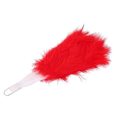 Burlesque Fan Kostüm Dance - tfxwerws Fancy Kleid Kostüm Zubehör Burlesque Dance Feather Hand Fan (rot)