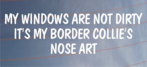 my-windows-are-not-dirty-its-my-border-collies-nose-art-funny-car-van-dog-sticker