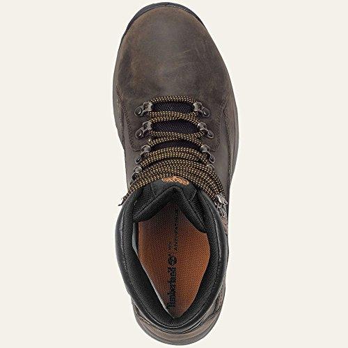 Timberland Men s Thorton Mid D Dark Boot 12 Men US