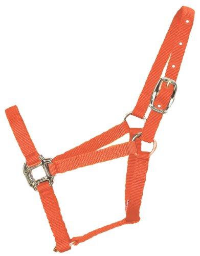 hamilton-halter-horse-equal-economy-triple-thick-durable-pony-mango-orange-3q