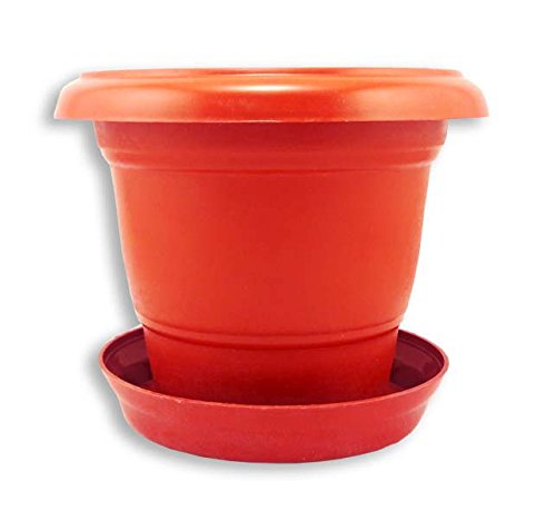 Dineshalini Terracotta Garden Plastic Pot with Coaster Trays, Garden Pot, Terracotta Pot with Terracotta Bottom Plates, Garden Pots with Base Trays, Garden Container, Home Garden, Base Tray, Coaster, Desk Planter, Vertical Garden Pot, Plastic Pot. Dimension-13 x 13 x 13 cms.  available at amazon for Rs.129