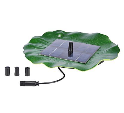 Pompa solare per laghetto con fontanella e ninfea galleggiante