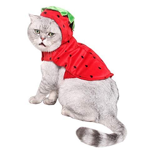 yu pet - Halloween - Kleid rote erdbeer - Set Komfort Hund Katze Festival Dress up Party Obst - Kleid