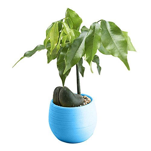 SMILEQ Flower Pots, Plastic Interior Plant Flower Pots for Home Office Decor Planter Balcony, Railings (Blau)