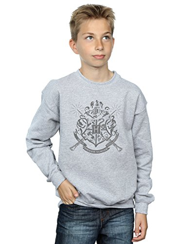 Harry Potter Jungen Hogwarts Badge Wands Sweatshirt 12-13 Years Sport Grey