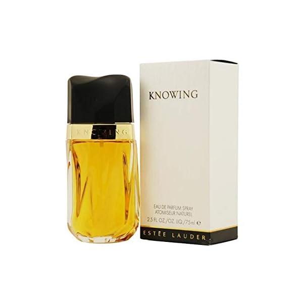 Estee Lauder 2617 – Agua de perfume