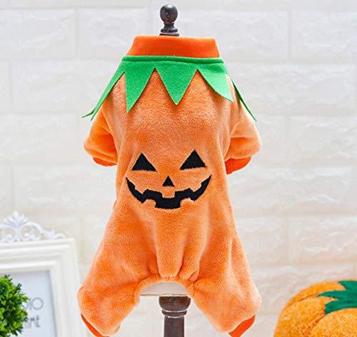 Hunde-Kürbis-Kostüm aus hartem Knochen, Halloween, Party-Dekoration, für Hunde -