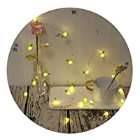 GUOCHENG 2.2m Pineapple Accessories LED String Light Silver Wire String Light Sign for Christmas Party Bedrroom Micro Starry Light Decor
