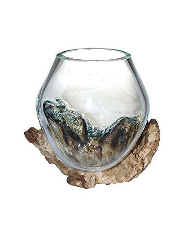 SAWA Deko-Vase Glasvase Blumenvase XS auf Treibholz/Wurzelholz Vase mit Holz