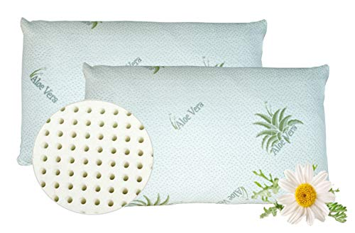 VENIXSOFT Paar Kissen Memory Foam, Kissenbezug Aloe Vera, Visco-elastischen Schaum, 70x40x12 cm, anti zervikal, ergonomisch, hergestellt in Italien