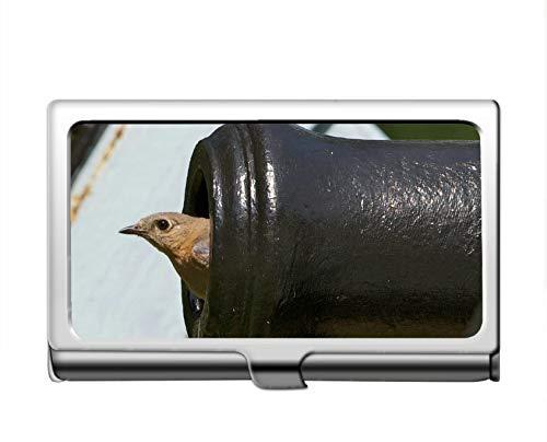 Professionelle Business-Kreditkartenetui/ID-Hülle, Gun Bird Edelstahl Card Holder