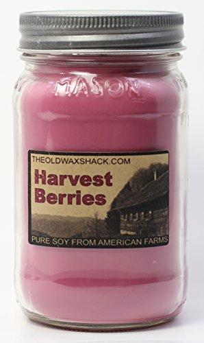 Ernte Beeren Soja Kerze Herbst Soja Kerze 16Oz Mason Jar ~ Die alte Wachs Shack (Jar Alte)