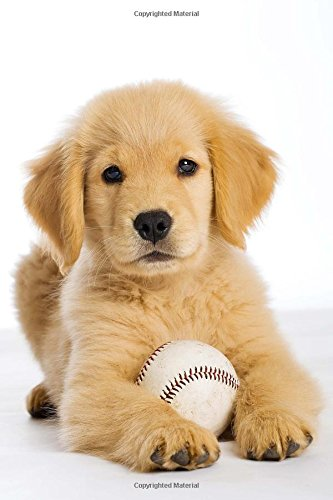 Sweet Golden Retriever Puppy with a Baseball Journal: 150 Page Lined Notebook/Diary (Golden Retriever Baseball)