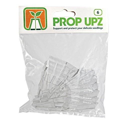 Prop Upz Gewächshäuser und Ausrüstung zur Anzucht, 6er-Pack, transparent, 21x15x3.5 cm, 12-550-180