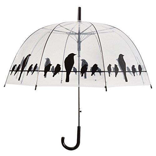 fallen-fruits-transparent-umbrella-birds-on-wire