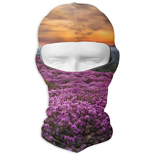 Pink Flowers Nature Blossoms Mountrain Sunset Balaclava Face Mask Hood for Neck Gaiter Headwear Helmet Liner -