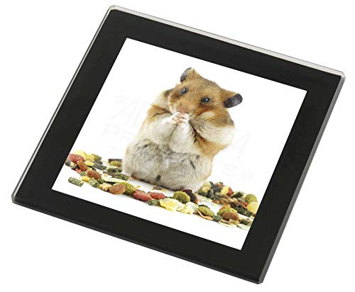 Advanta - Glass Coasters Lunch Box Hamster Glasuntersetzer mit schwarzem Rand
