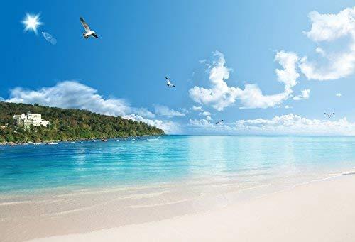 Green Island Resort (EdCott Sommer Strand Insel Foto Kulissen 7 x 5 ft Vinyl Fotografie Hintergrund romantischen Strand Blue Ocean Green Island Village Resort Blauer Himmel weiße Wolken Hintergrund Fliegende Möwen)