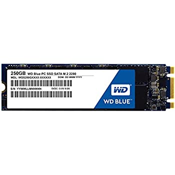 WD Blue SSD M.2 - Disco duro sólido de 250 GB (SATA III 6 GB/s ...