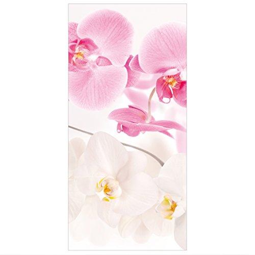 Bilderwelten Raumteiler Orchideen Delicate Orchids 250x120cm inkl. transparenter Halterung
