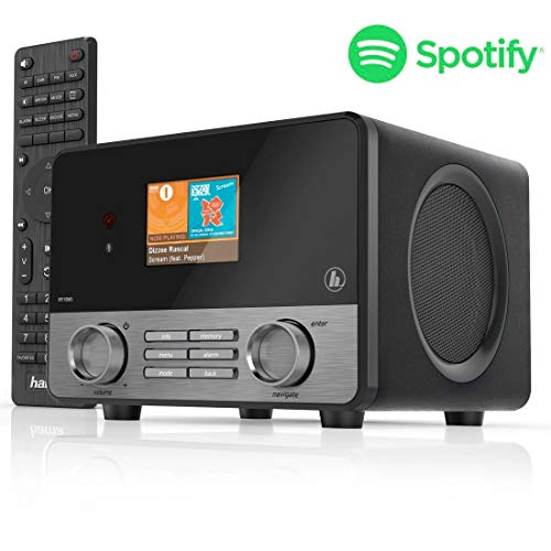 R110MS (Spotify, WLAN, USB, Multiroom, 30 Favoritenplätze, Wifi-Streaming, beleuchtetes 2.6