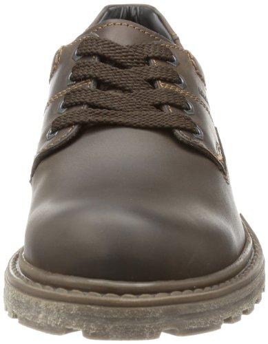 Marc Shoes  Paul, Derby homme Marron - Braun (t.d.moro 490)