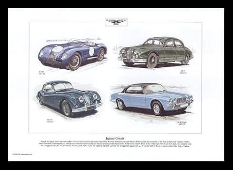 Idéal Jaguar Classic Cars–Type C, MK1, Xk140, XJ S2Coupé–Art