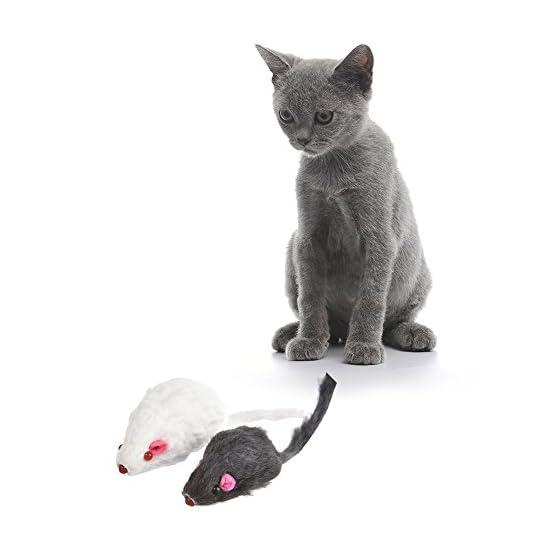 12-giocattoli-del-mouse-del-gatto-del-PCS-giocattoli-dei-gatti-del-mouse-per-il-gattino-dellanimale-domestico-con-il-suono