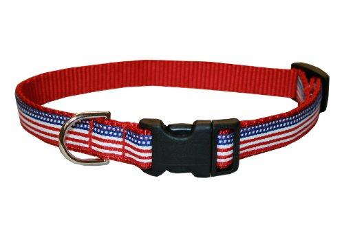 Sassy Halsband Dog Wear 1/5,1x 15,2cm-12