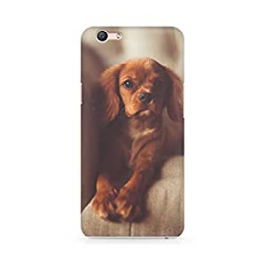 Printed back cover for Oppo F1S by Motivatebox.Dog On Sofa design, Polycarbonate Hard case with premium quality and matte finish