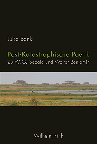 post-katastrophische-poetik-zu-w-g-sebald-und-walter-benjamin-german-edition