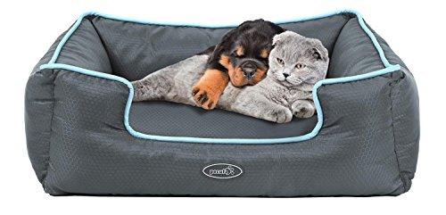 Cuccia gatto/cane