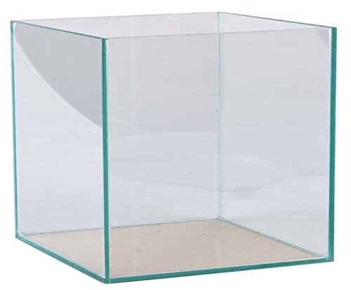 FavoPet 27 Liter Glasaquarium Würfel 30x30x30 cm Glasbecken Nano Aquarium transparent verklebt