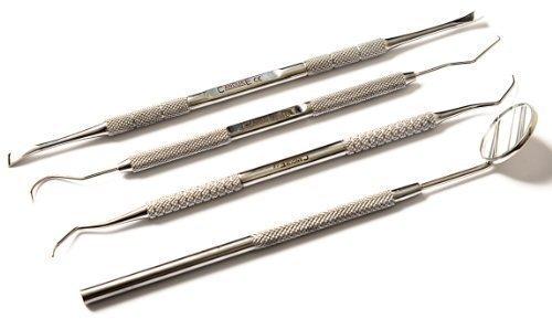 YNR® 4 Teiliges Zahnpflege Set - Zahnbelag Zahnstein Plaque Entferner Werkzeug Zahn Kratzer - Mundspiegel & Geräte Set (Plaque-entfernung)