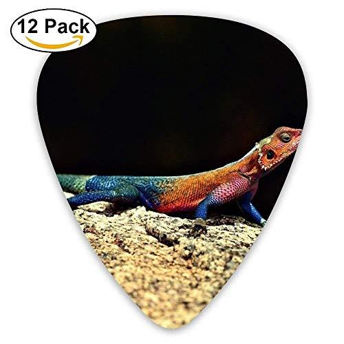 Chameleon On Rock Reptile Plektrum12 Stück Für E-Gitarre, Akustikgitarre, Mandoline und Bass -