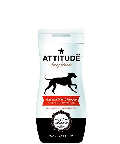 attitude-pet-shampoo-beruhigende-oatmeal-coco-lime-8-fl-oz