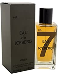 Iceberg Amber Homme/Men, eau de toilette, vaporisateur/Spray, 100ml