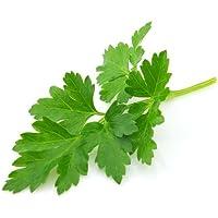 Tradico Super Agri grüne Petersilie flache gemeinsame Blatt 100Seeds * 4Pkts