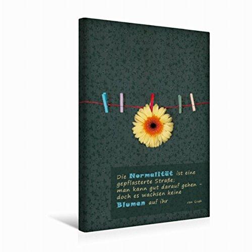 Calvendo Premium Textil-Leinwand 30 cm x 45 cm hoch Ein Motiv aus Dem Kalender Lebenszeichen | Wandbild, Bild auf Keilrahmen, Fertigbild auf Echter Leinwand, Leinwanddruck Orte Orte