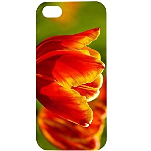 Casotec Tulips Flower Design Hard Back Case Cover for Apple iPhone 5 / 5S