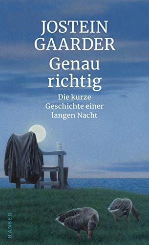 Buchseite und Rezensionen zu 'Genau richtig: Die kurze Geschichte einer langen Nacht' von Jostein Gaarder