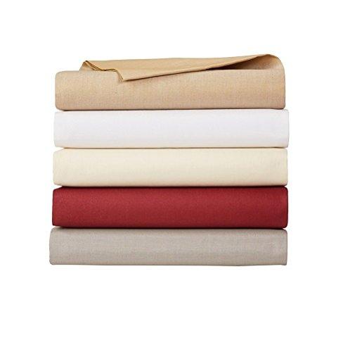 AmazonBasics Drap-housse 200fils Blanc